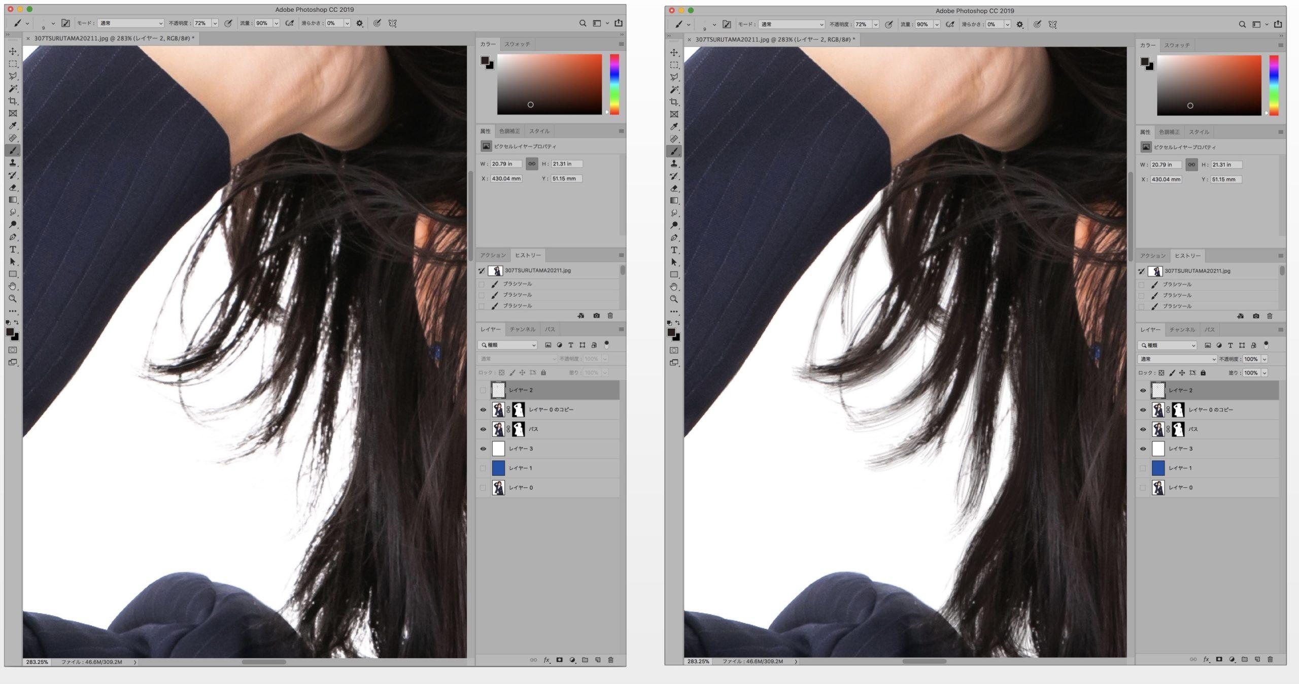 髪の毛比較